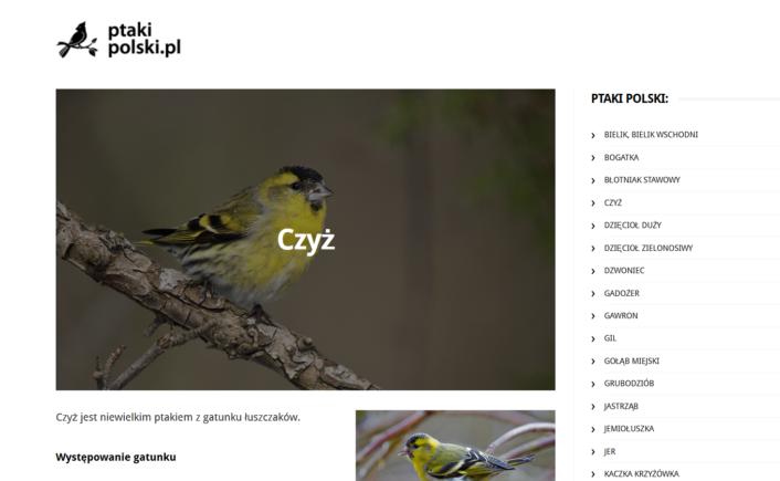 ptakipolski-strona